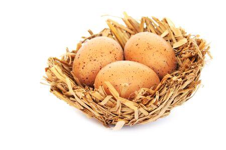 Easter  eggs nest isolated on white background. photo