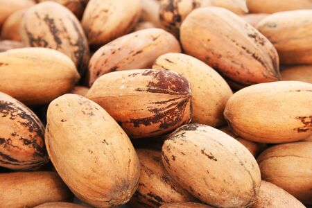 anti oxidants: Pecan nuts as a background.