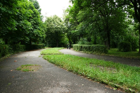 Path in the landscaped park. Stock Photo - 13696045