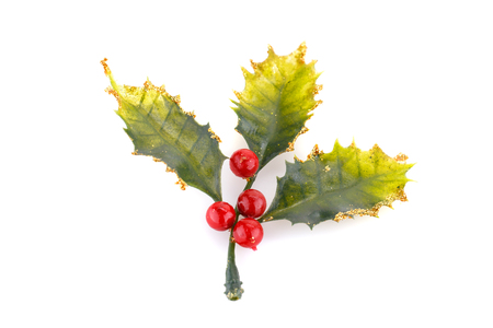 holly berry: Christmas decoration isolated on white background. Stock Photo