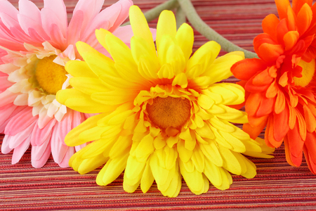 Colorful fabric daisies on cloth background, closeup picture.