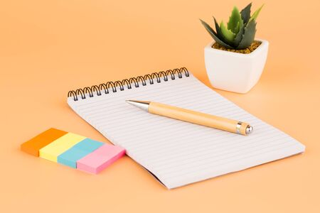Notepad, pen, colorful paper stickers and plant in white pot on yellow background.