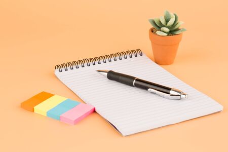 Notepad, pen, colorful paper stickers and plant in brown pot on yellow background.