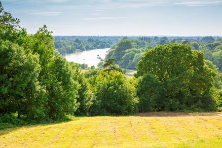 View of Thames river from Richmond Park, UK. Landscape with trees and field in sunny summer day.