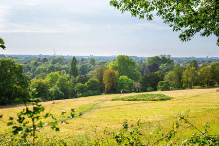 View of Kingston, Surrey from Richmond Park, UK. Landscape with trees and field in sunny summer day.