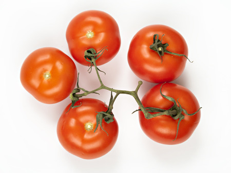 Close-up photo of tomatoes on the white background - five photo