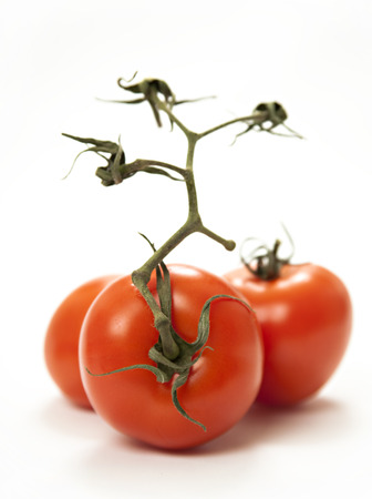 Close-up photo of tomatoes on the white background - three photo