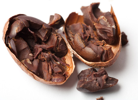 Raw cocoa. Studio shot. White background. photo