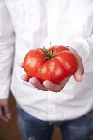 Hands holding tomato. Studio shot. photo