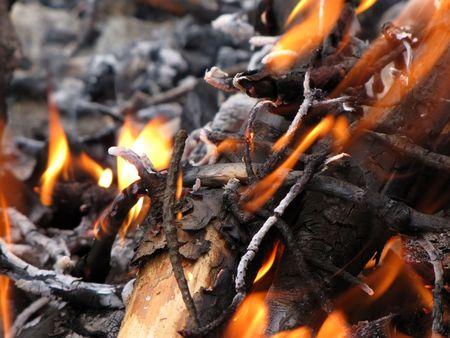 annihilation: campfire