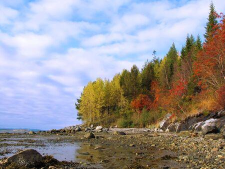 white sea coast