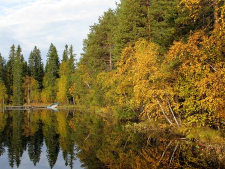 skiff: Beautiful forest lake in the autumn day