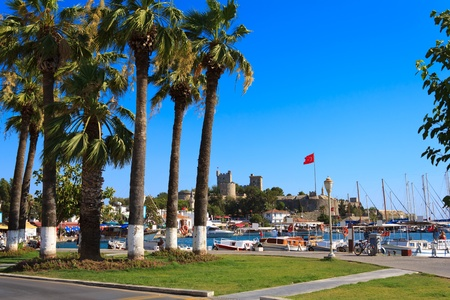 Nice view of the historic Bodrum Castle with palm trees photo