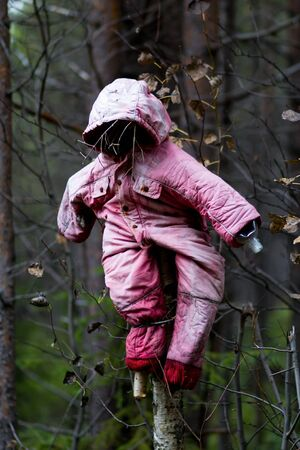 Halloween scary scarecrow in autumn forest photo