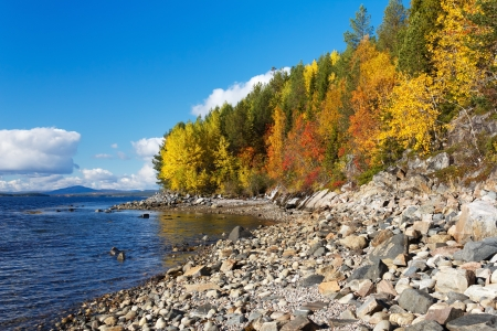 Coast of the White Sea, autumn, Russia Stock Photo - 16380779