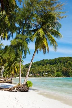 kood: Beach on the Koh Kood island, Thailand Stock Photo