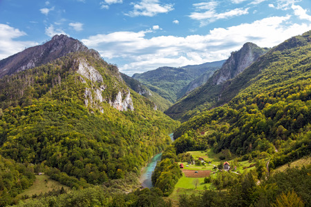 tara: Landscape with mountains and canyon of river Tara, Montenegro