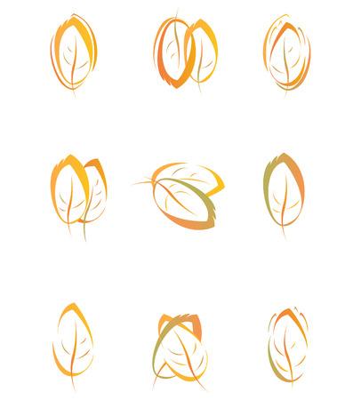 Autumn leaves for design. Vector