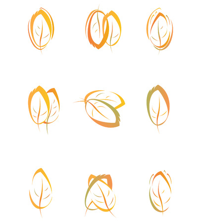 leaf logo: Autumn leaves for design.