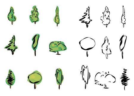 Vector of trees. Illustration