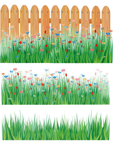 Grass and flowers, vector