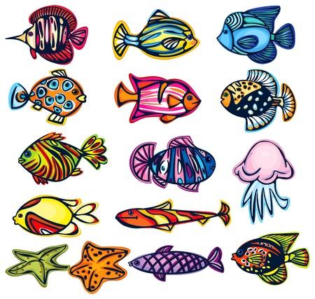 민물의: Set of fishes.