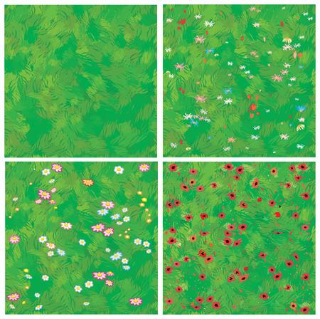 poppy field: Textura transparente de hierba y hierba con flores.