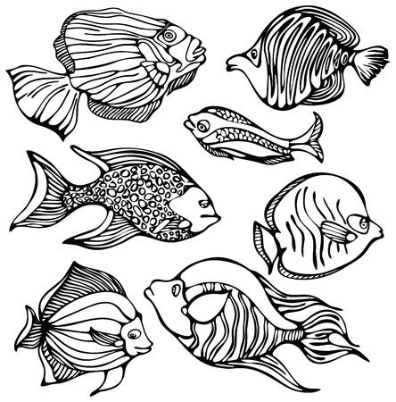 peces de agua salada: Siluetas de peces