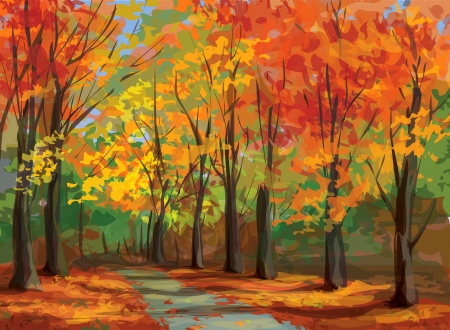 autumn trees: Vector of autumn landscape, pathway in park  Illustration