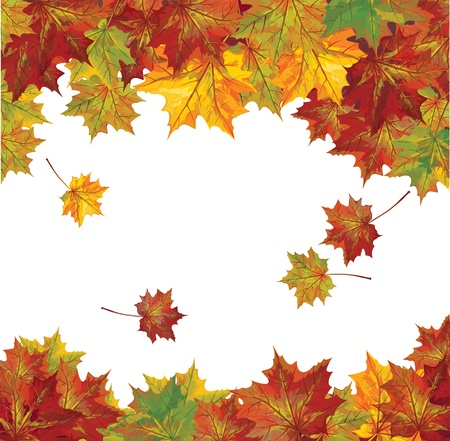 leaves border: Vector of autumn colorful leaves