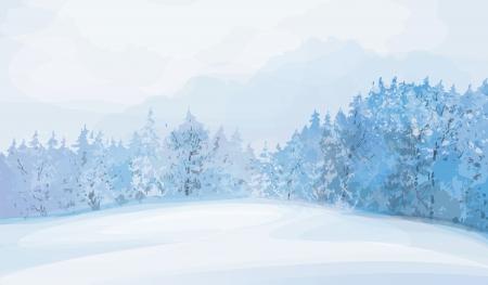 snow field:  winter landscape