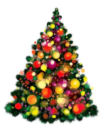 isolated tree:  Christmas tree