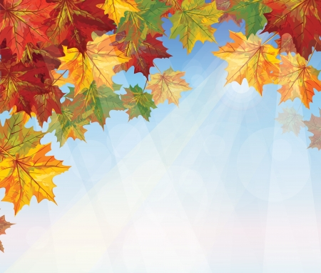 autumnal leaves on blue sky background   Stock Vector - 15773878