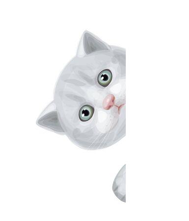 cute kitten hiding by blank  Stock Vector - 16428701