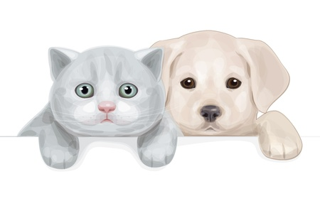 cute puppy and kitten hiding by blank  Vector