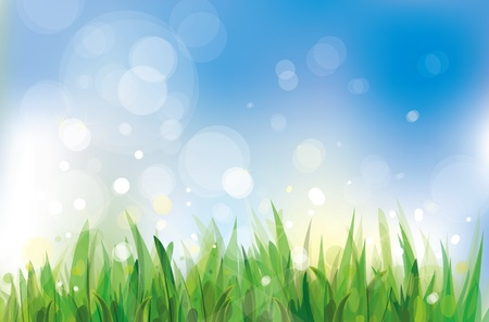 Vector of spring background, sky and grass