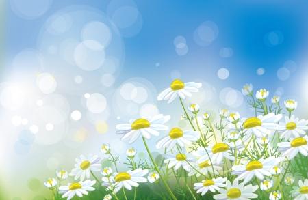 blinking: Vector de fondo primavera