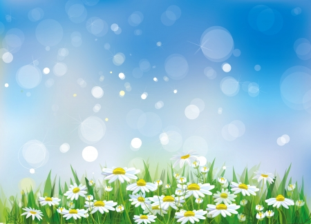 Vector of spring background  Stock Vector - 17207854