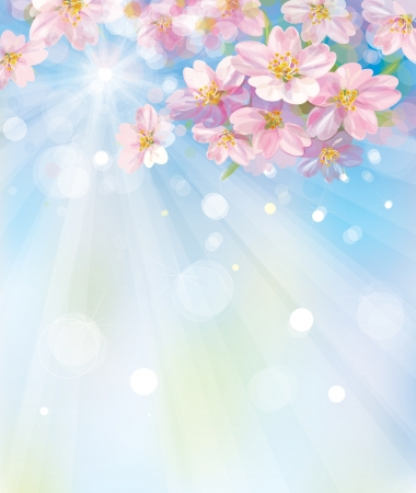 Vector of spring blossoming tree on sky background Stock Vector - 17207838