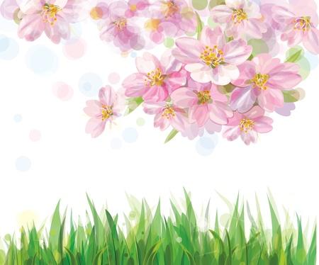 꽃이 만발한: 봄 꽃이 만발한 나무와 푸른 잔디의 벡터
