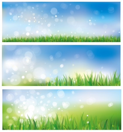 Vector of spring background, sky and grass  Illustration