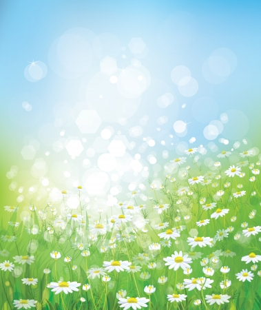 spring background: Spring background