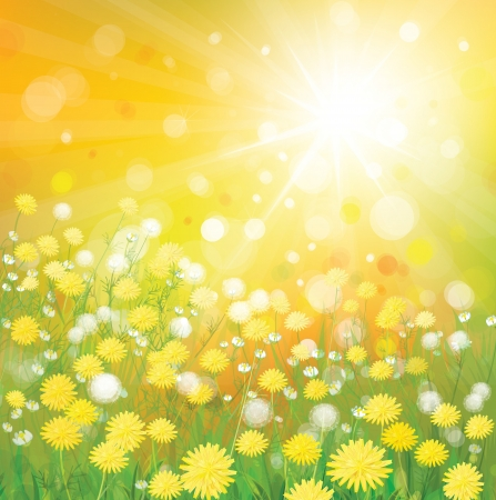 Vector of sky background with yellow dandelions  Stock Vector - 17553172