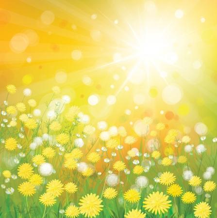 Vector of sky background with yellow dandelions Stock Vector - 17553172
