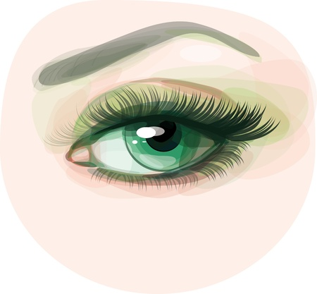 make up eyes: Vector of beautiful green woman s eye