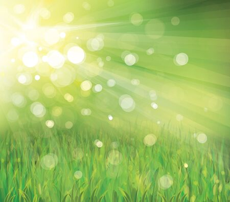 sunrays: Vector of spring background
