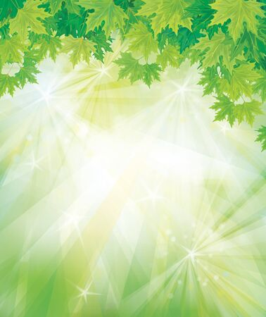 Vector of green leaves on  sparkly sky  background  Stock Vector - 17776980