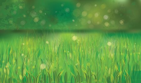 spring background with green grass Stock Vector - 18180246
