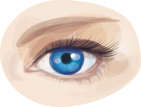 close up eyes:  beautiful blue woman s eye