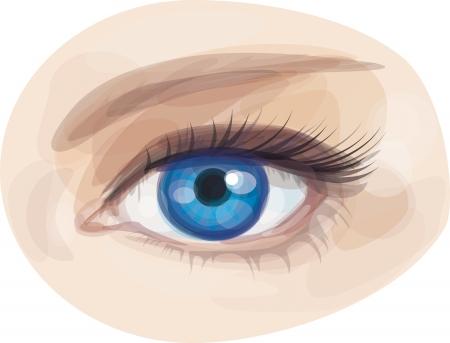 oeil dessin: belle femme bleu ?il de